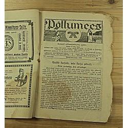 Ajakiri Põllumees, 22/1925