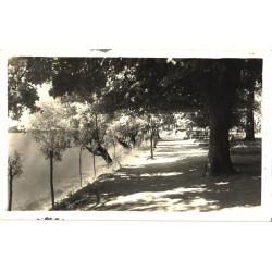 Võru:Park tamula järve...
