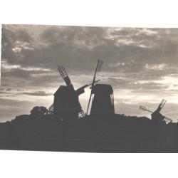 Saaremaa, Angla tuulikud,...