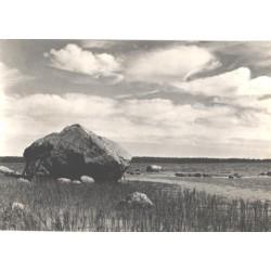 Saaremaa, Vaade Abruka...