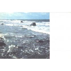 Saaremaa, Meri, 1974
