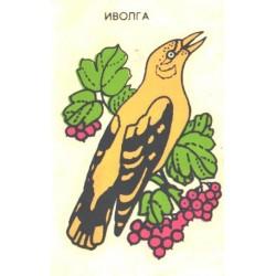 Veskleepekas Peoleo, enne 1990