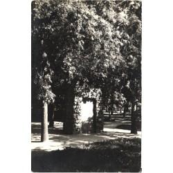 Kuressaare:Monument pargis,...