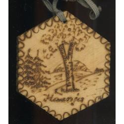 Nõuka aegne puidust medal...