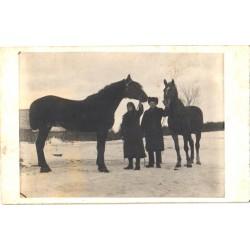 Hobused talvisel maastikul,...