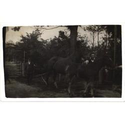 Mees jalutab hobustega,...