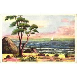 Jahid merel, rannik, enne 1940