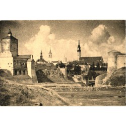 Narva linna vaade, kindlus,...